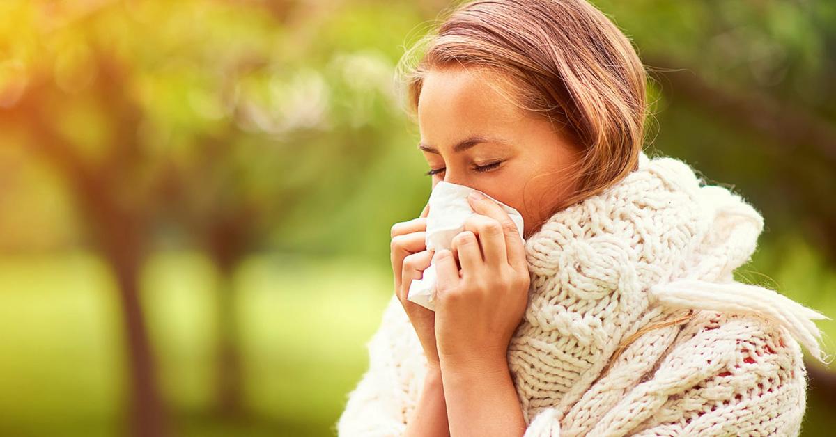 Allergia Graminacee Medicalbox